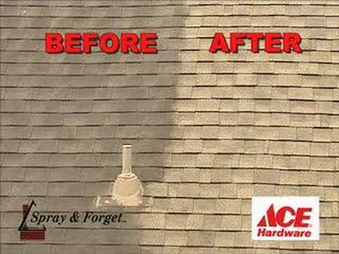 How To Remove Moss U0026 Mold From Your Roof Shingles With Wet ...