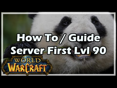 [World of Warcraft] How To / Guide - Server First Level 90 Solo / What It  Takes To Be The Best