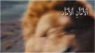 السلام عليك ياامير المؤمنين علي ابن أبي طالب عليه السلام