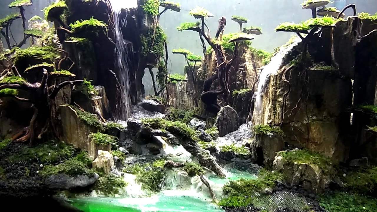 Waterfall Fantasy Aquascape Youtube