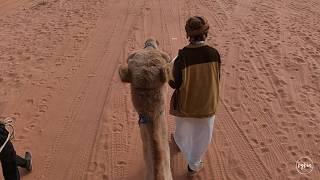 Camel riding in Wadi Rum - Jordan