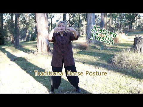 Tiandi Qigong 4A – Traditional horse stance   Nature Health