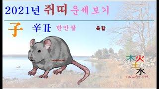 2021년 쥐띠 - 2021년 신축년 쥐띠 띠별 월별 사주 운세