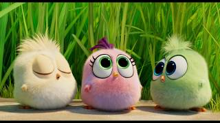 "THE ANGRY BIRDS MOVIE 2: ""Boa"""