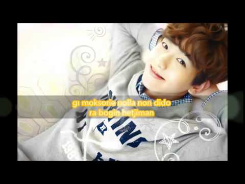 EXO-HEART ATTACK easy lyrics