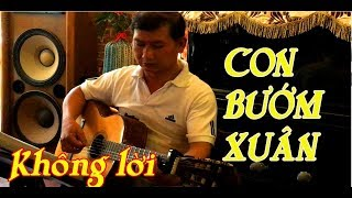 Guitar không lời / Con Bướm Xuân / nhạc nước ngoài /NS Tương nhuệ /channel Ducmanh guitar Bolero