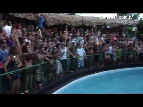 Jose de Divina,  Nima Gorji ,Jonathan Tena & Madame Tina | Zoo Project (Ibiza) DJ Set | DanceTrippin