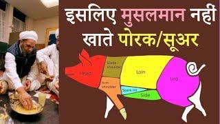 TRUTH OF ISLAM ! क्या सच में इस्लाम में सूअर का  मास खाना  मना है ?