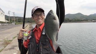 近場の岸壁でクロ釣り今福工業団地にて【つり具のまるきん釣り情報】