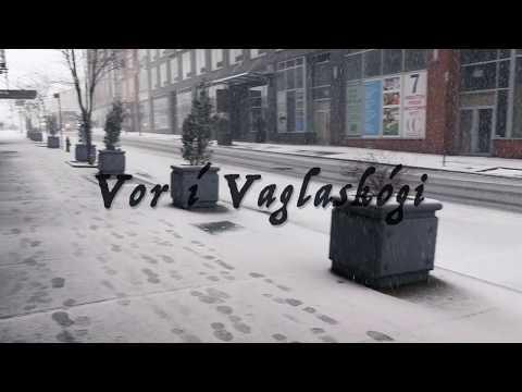 Vor í Vaglaskógi - Kaleo || Icelandic Lyrics