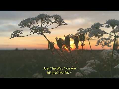 video-lirik-(just-the-way-you-are~bruno-mars)