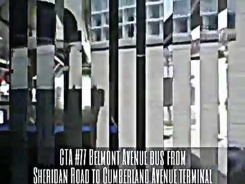 Cta 77 Belmont Avenue Bus From Sheridan To Cumberland