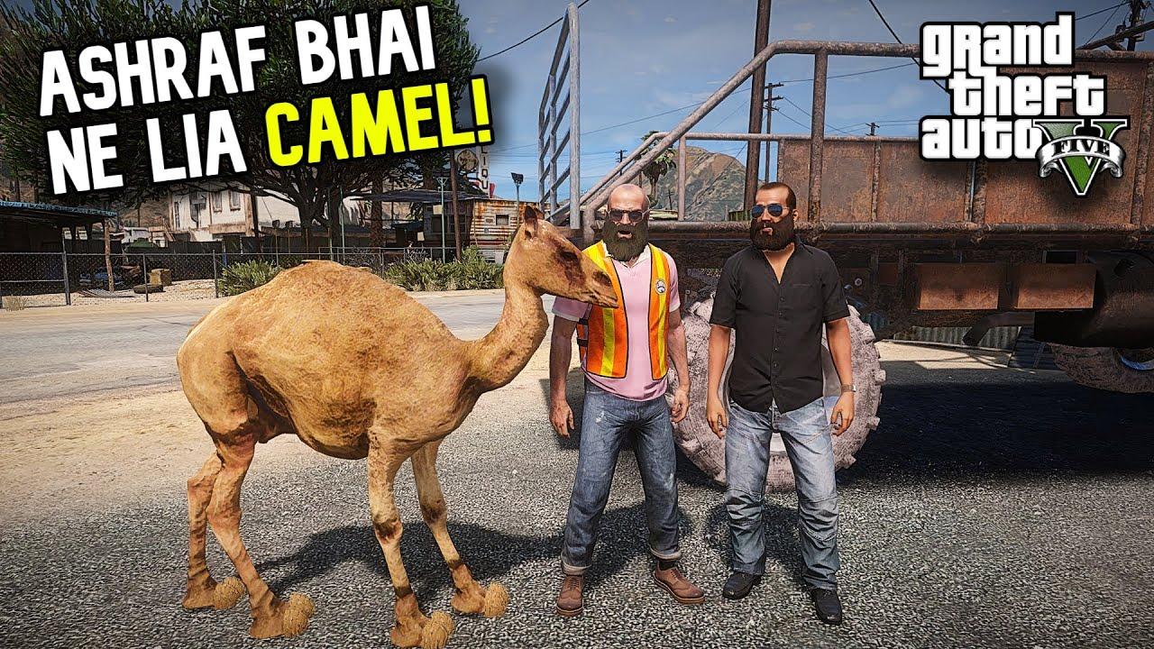 ASHRAF BHAI NE LIA CAMEL! | FUNNY 'MANDI SERIES' BAKRA EID EPISODE 8 | GTA 5 MODS PAKISTAN