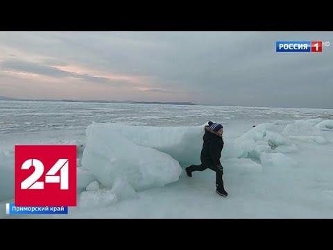 Восстание льда: жители Владивостока восхищаются величием природы - Россия 24