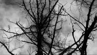 Xasthur-Drown Into Eternal Twilight