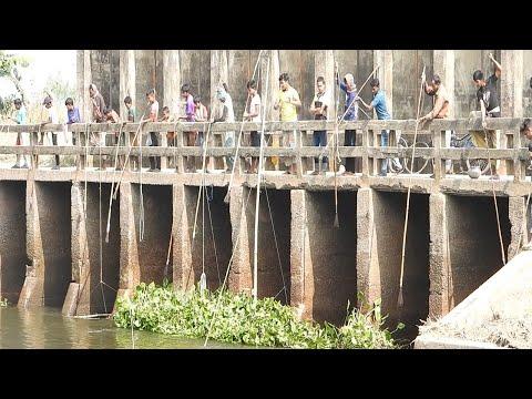 AMAZING TECHNOLOGY | BIG CATCH FISHING Using BAMBOO Vs IRON Vs FISHERMEN CATCH KALHEFISHES IN RIVER