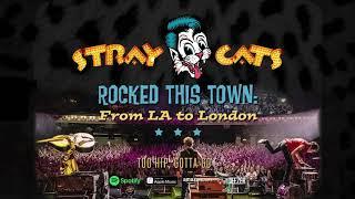 Stray Cats - Too Hip, Gotta Go (LIVE)