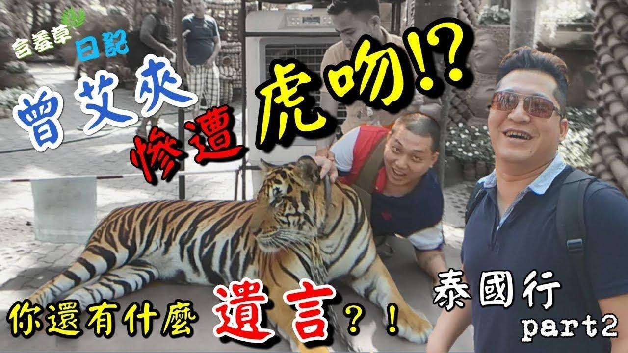 瘋旅人►【含羞草日記】泰國行P2 曾艾夾有什麼遺言趕快說!!被老虎咬會重傷的!!