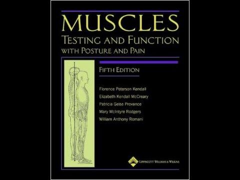 MCC PTA Program - UE Manual Muscle Testing