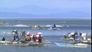 Bogo City, Cebu Bancarera 2014 (Ay Abao(Team Black Manta) vs Celebrity(Manful Racing))