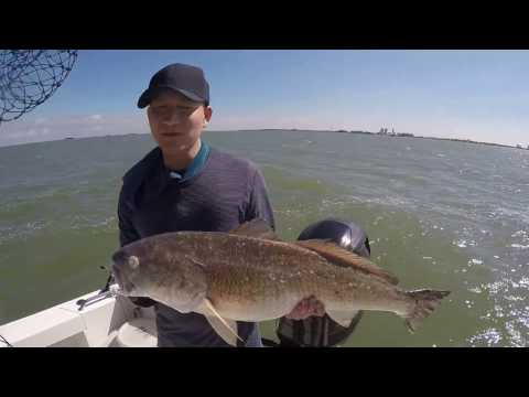 Galveston fishing trip 2017