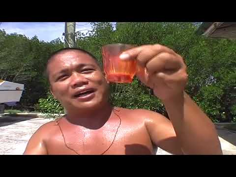 FUNNY FILIPINO GUY TELLS HOW TUBA (coconut wine) IS MADE, SIQUIJOR, PHILIPPINES, TRAVEL.