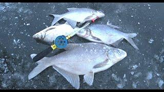Ловля ЛЕЩА зимой на мормышку Зимняя рыбалка 2020 2021 Рыбалка на Оке