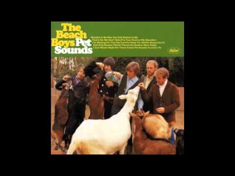 The Beach Boys - I just wasn't made for these times (Vocals Only)