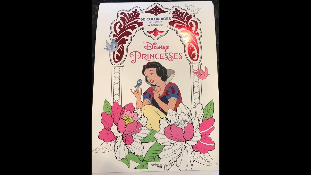 Flip Through Of Disney Princesses Coloring Book By Hachette Heros