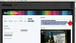 How to Embed VINE Posts on Website