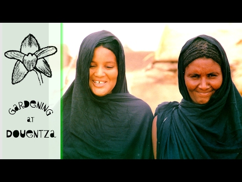 Travels in Mali - Timbuctu to Mopti by boat & notes on food, health & modesty