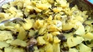 Вкусняшка, свежие маслята  с картошкой. 30 июля 2016 г.