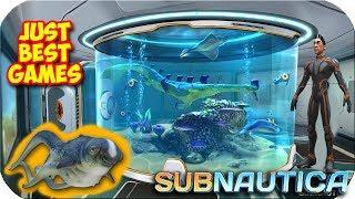 видео Большой аквариум