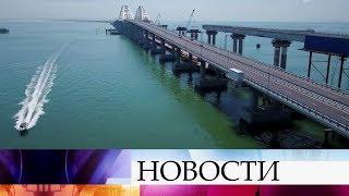 Крымский мост не оказывает негативного влияния на морских обитателей, рассказали экологи.