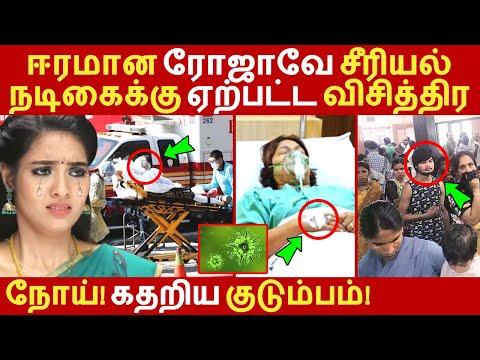 ஈரமான ரோஜாவே சீரியல் நடிகைக்கு ஏற்பட்ட விசித்திர நோய்! கதறிய குடும்பம்! Eeramana Rojave   Vijay tv