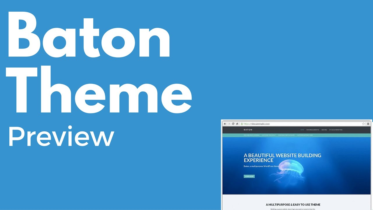 Baton WordPress free theme | Multi-purpose theme | Drag and drop | PREVIEW