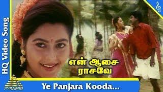 Ye Panjara Kooda Video Song   En Aasai Rasave Movie Songs  Sivaji Radika  Murali  Roja Pyramid Music