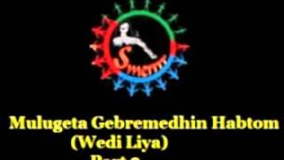 Mulugeta Gebremedhin Habtom (Wedi Liya) - Eye Witness Account On PFDJ Crimes - Part 2