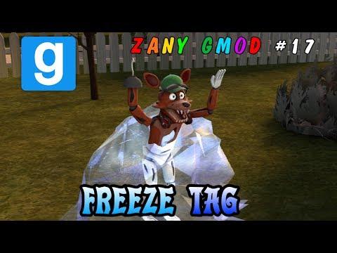 A FREEZING EPISODE! || Gmod FREEZE TAG || Zany Gmod #17