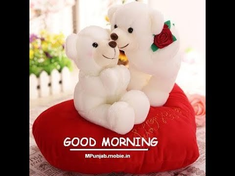 Best Good Morning With Gif Teddy Bear QuotesGreetingsEcardWishesPicture Images WhatsApp Video1