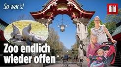So war der erste Zoo-Tag nach der Corona-Zwangspause   Berliner Zoo wieder offen