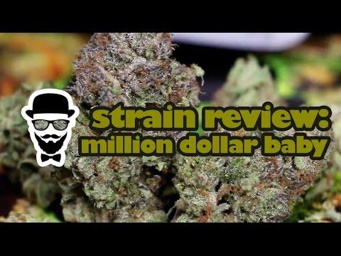 Strain Review: Million Dollar Baby (Medizin) - YoungFashioned.com