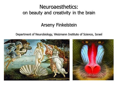 Arseny Finkelstein - Neuroaesthetics: on beauty and creativity in the brain