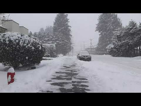 Crazy Snow In Surrey BC January 15th 2020