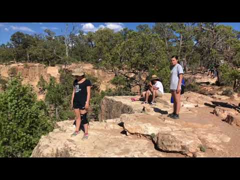 Coliseum College Prep Academy-Trip to the Grand Canyon
