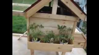 Jose's custom bird houses