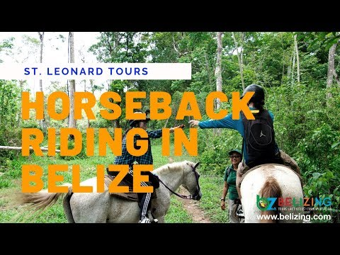 Experiential Horseback Riding Tour in Belize with St.  Leonard's Tours