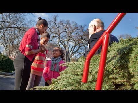 The First Lady Receives the White House Christmas Tree