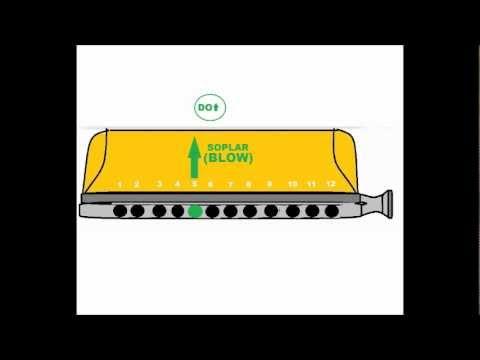 Harmonica chromatic harmonica tabs : Chromatic harmonica tutorial : easy song for beginners. Armónica ...