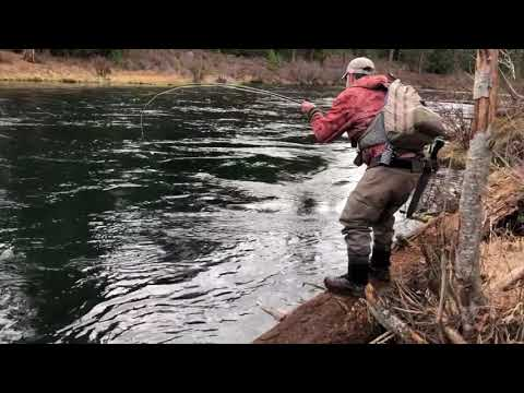 Metolius River Fly Fishing - Catching A Big Bull Trout